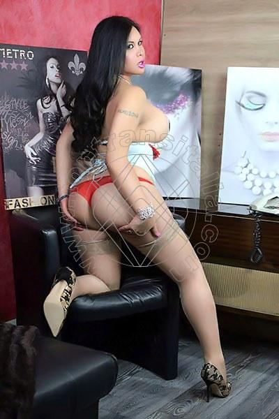 Barbarita ALESSANDRIA 3511078576