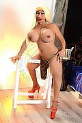 Trans Altopascio Top Star Trans 342.5585715 foto hot 9