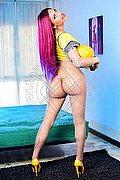 Trans Cinisello Balsamo Jade 324.8840389 foto 2