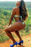 Feira De Santana Stella lima 0055.71992993320 foto 11