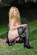 Trans Treviso Laura La Max Transex 320.3571032. foto hot 10