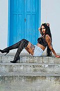 Asti Angelina Tx 388.7521287 foto 8