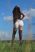 Asti Angelina Tx 388.7521287 foto 10