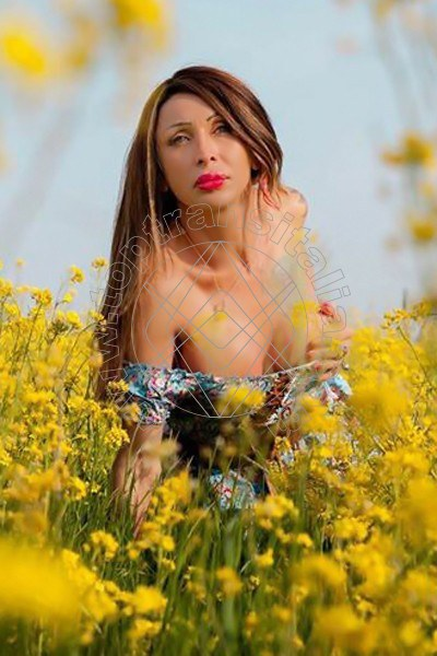 Foto 100 di Monica Kicelly trans Parma