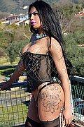 Roma Rayla Rios 328.8544545 foto 5